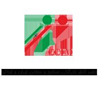عضو اتاق بازرگانی صنایع و معادن ایران و ایتالیا